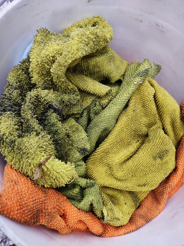 mold. mold spores, dirty ducts, air duct cleaning